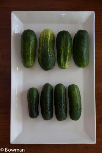 20140813 Cucumbers for soup_MG_8579