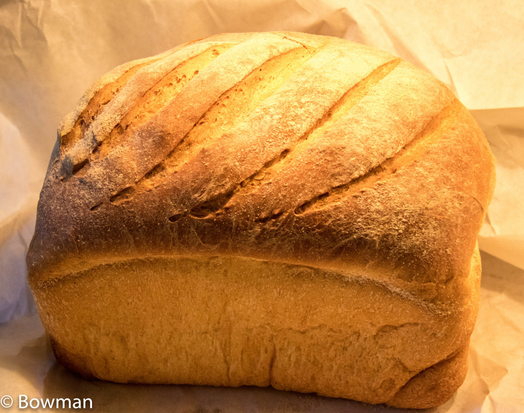 loaf from the freezer 20151027-_MG_3042.CR2